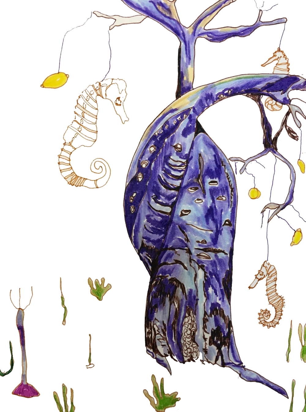 Baobab Seahorse, 2015, Fine liner on paper, 14.8 x 210 cm