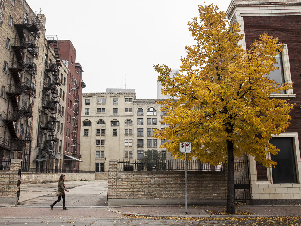 The colours of fall look even more vibrant placed on the monotone backdrop of The Exchange.