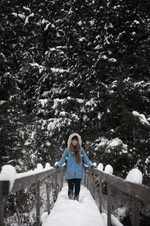 gage_fletcher_tal_snowtrees.jpg