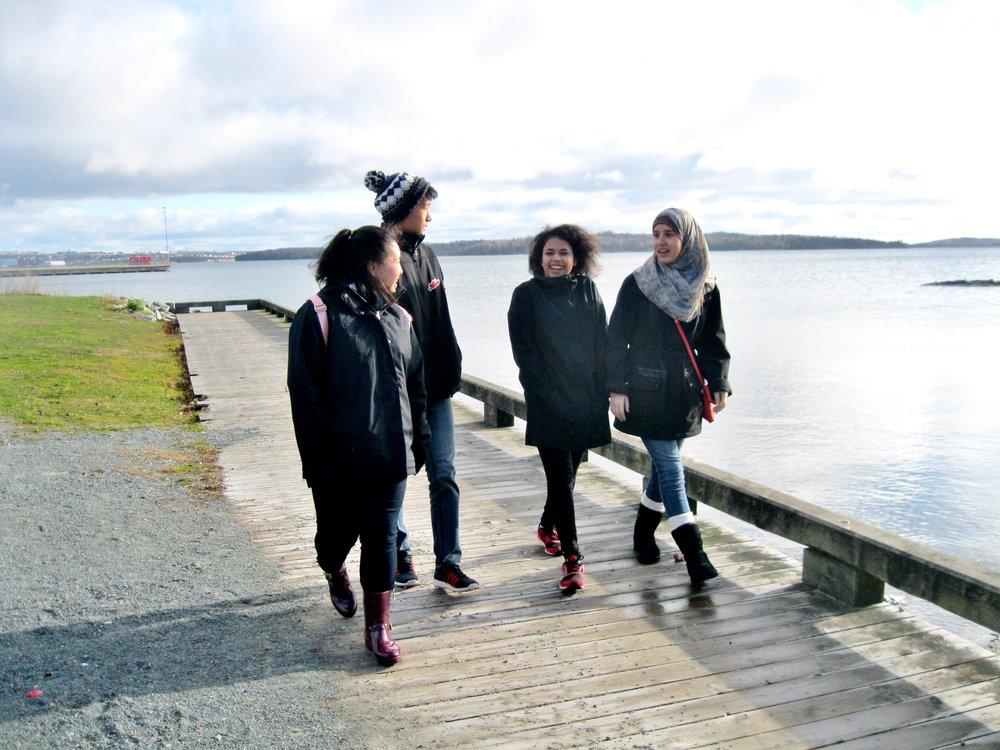 Ambassadors Harbour.jpg
