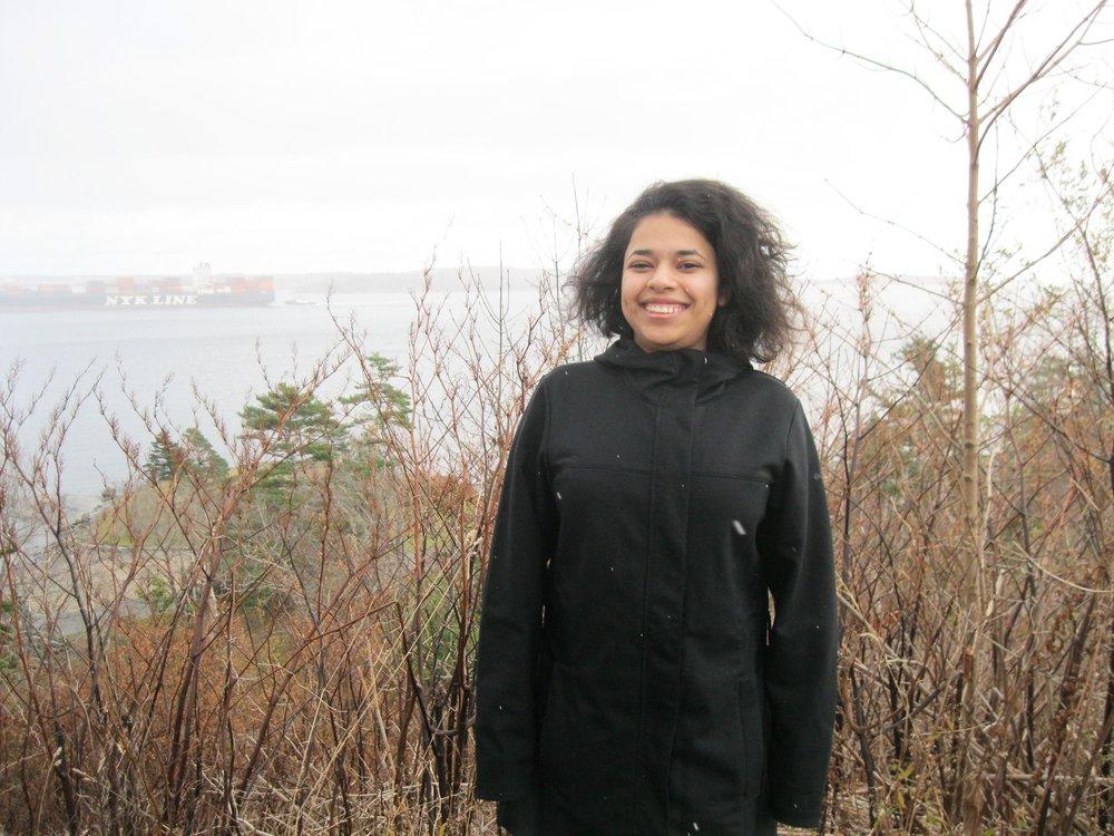 Noha Shehata (NL)