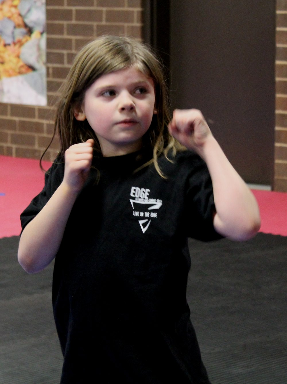 Youth Martial Arts Classes High Point