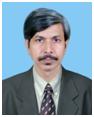 Prof. Ajay Kumar Ray.png