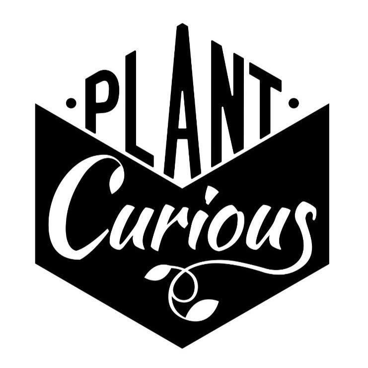 plant curious.jpg