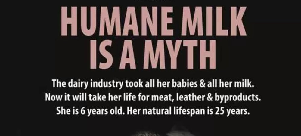 humane milk is a myth.jpg