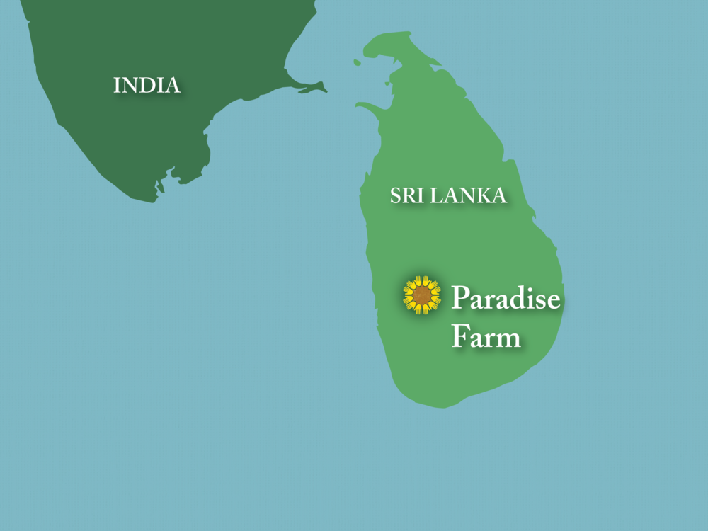 Map Paradise Farm copy2.png