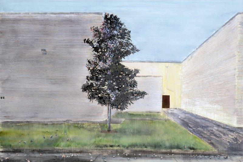 Black Magnolia behind a Mall