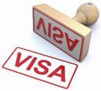 Visa picture.jpg