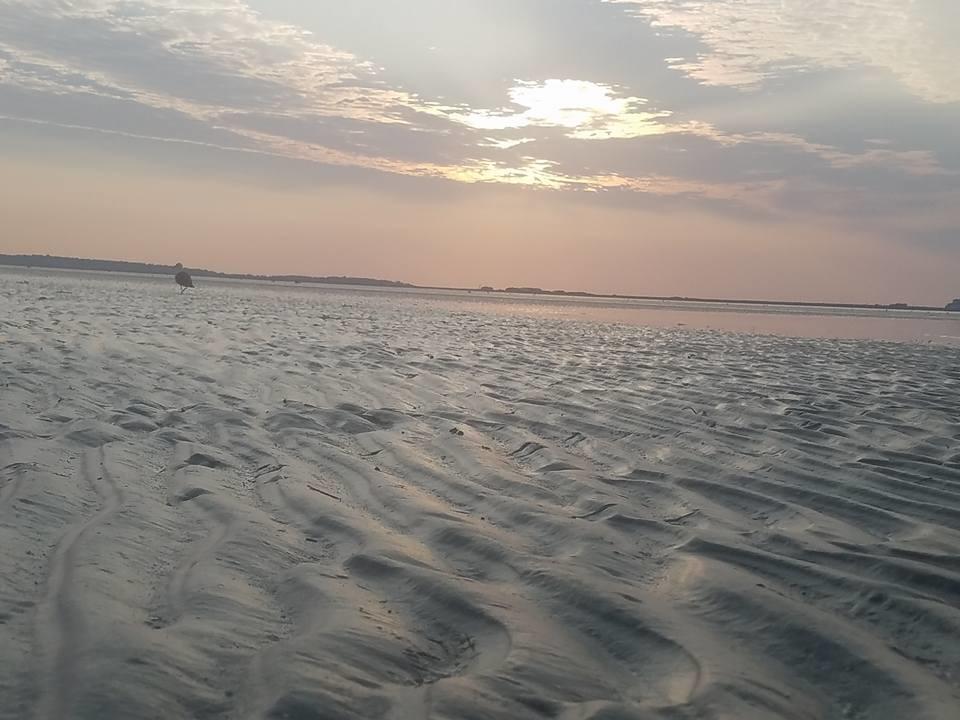 7_22_beach1.jpg