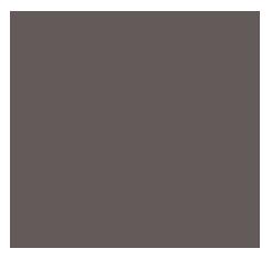 BRAND GREY   RGB 100, 92, 90 HEX#645c5a HSL 11, 5%, 37%