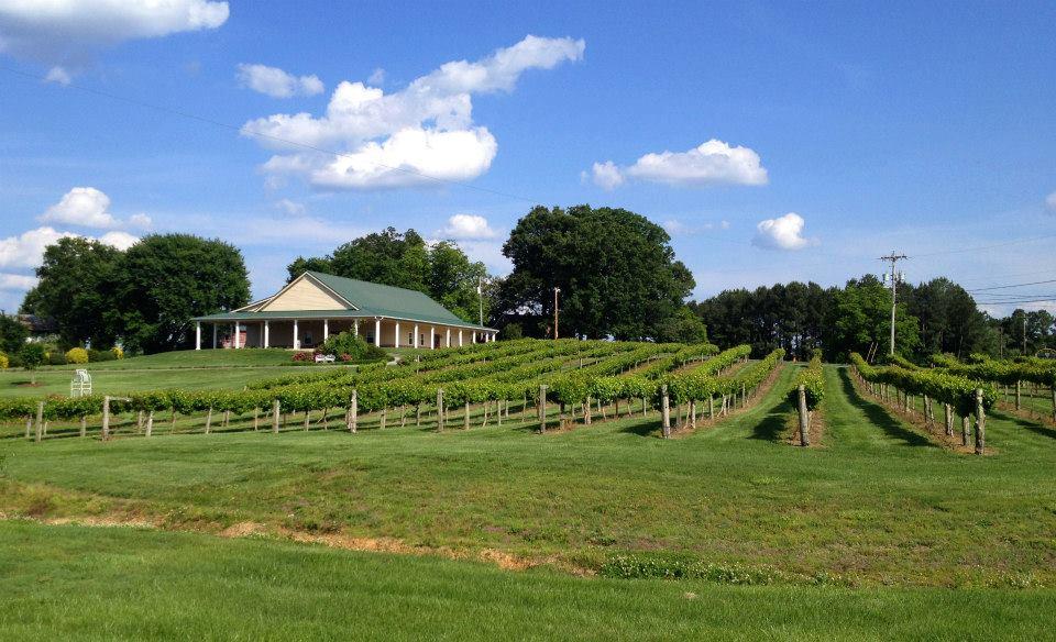 Dennis Vineyards|Trusted Preferred Classic Less-than-50 50-100 100-250 26mi-plus
