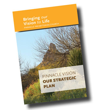 Pinnacle_Vision_Brochure_CVR.jpg