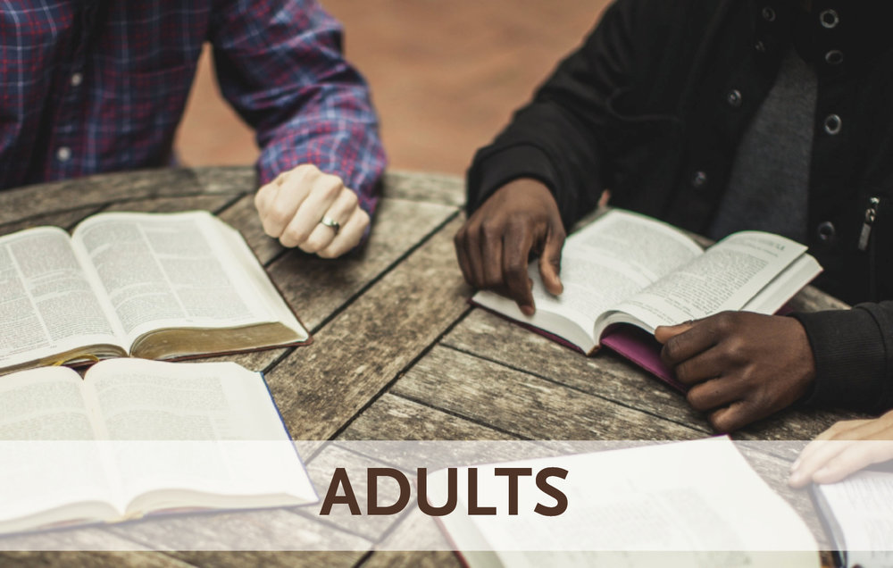 learn-Adults-image.jpg