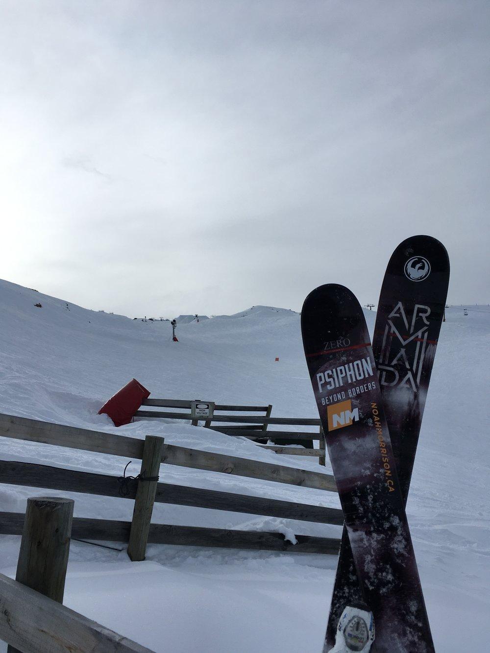 Ski shot pic 3.jpeg