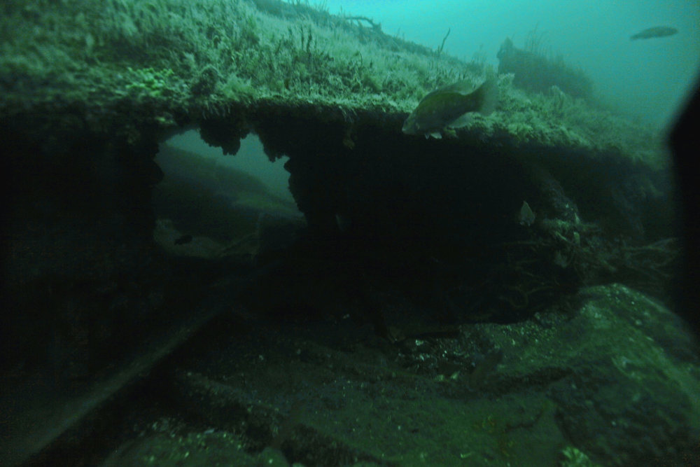 city of salisbury shipwreck underwater 2014.jpeg