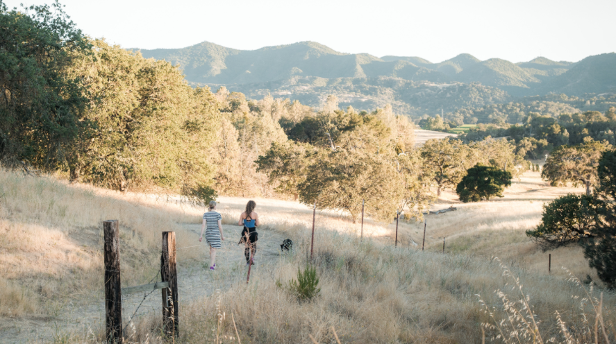 Get away into the back country hills of Santa Margarita and treat yourself (because you deserve it) to a weekend retreat where you will learn, laugh, and relax (and maybe drink some wine).