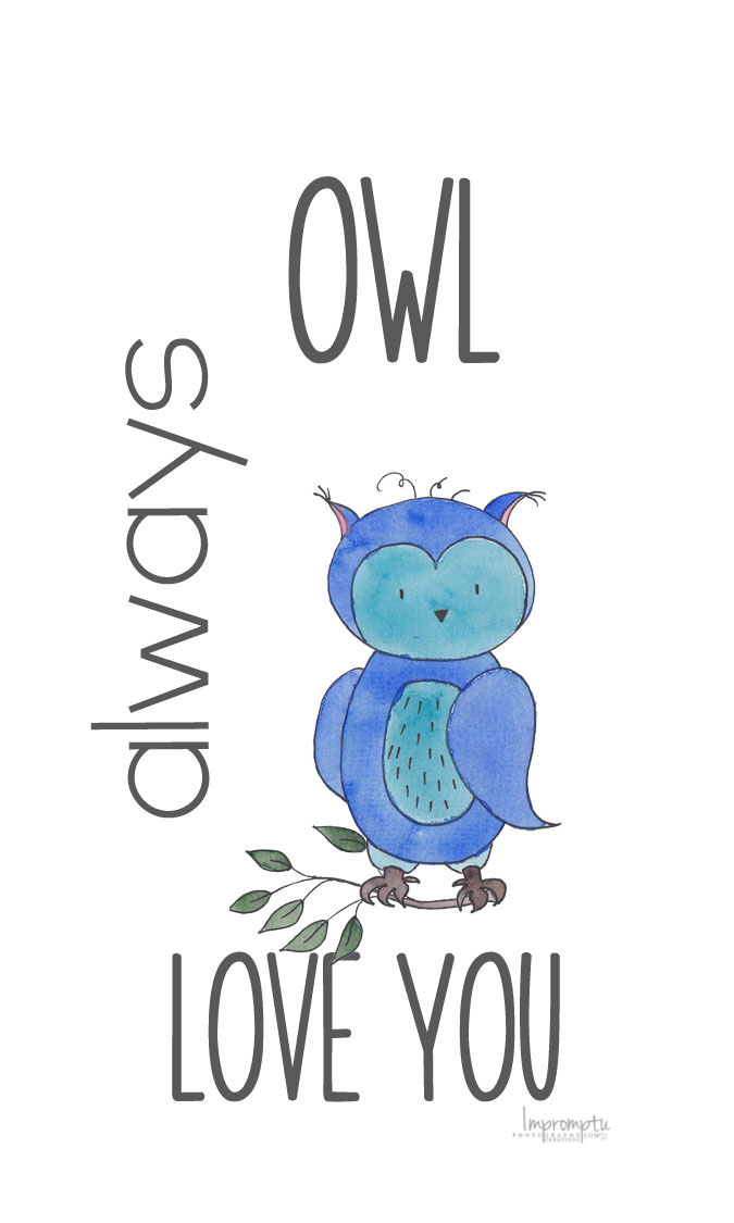 Owl always Love you Valentine