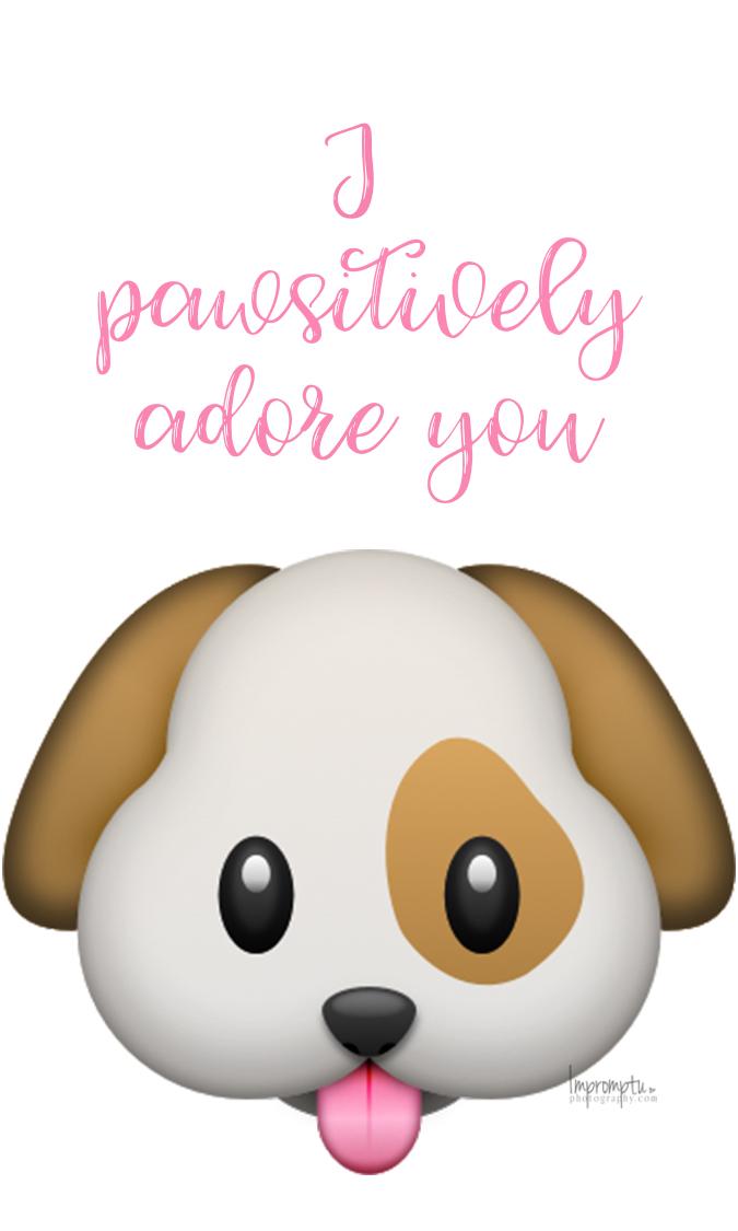 I pawsatively Adore you.jpg