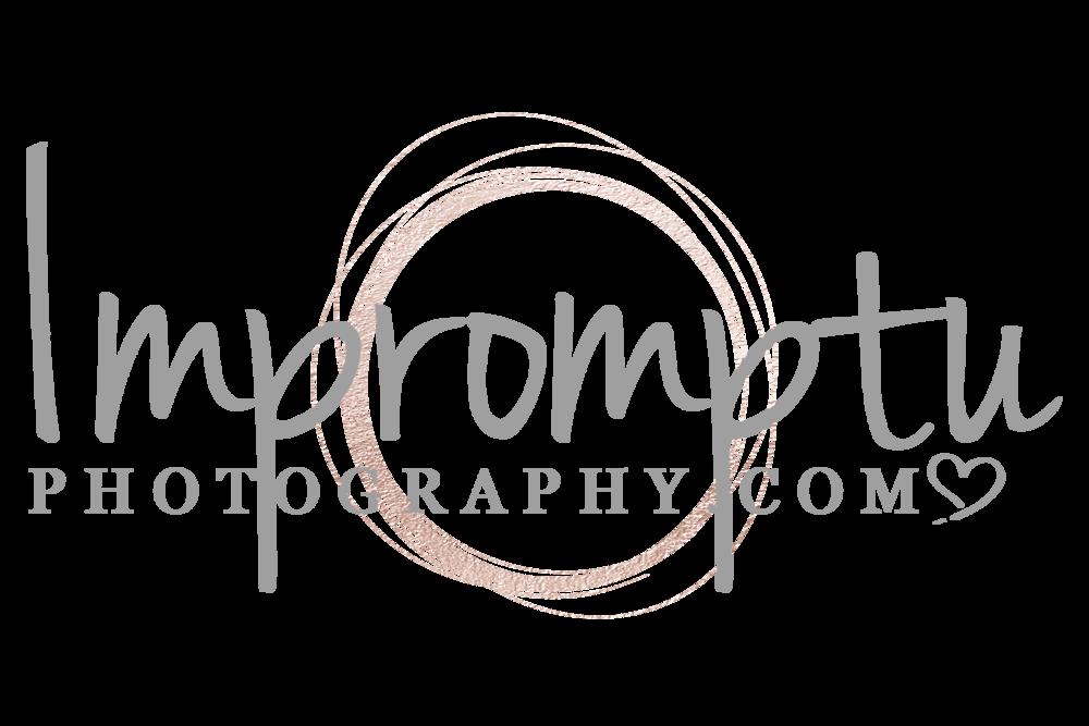Crab Apple Blossom — Impromptu Photography