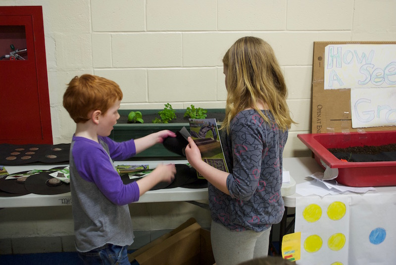 Students teaching students about the Seedsheet growing in their classroom.