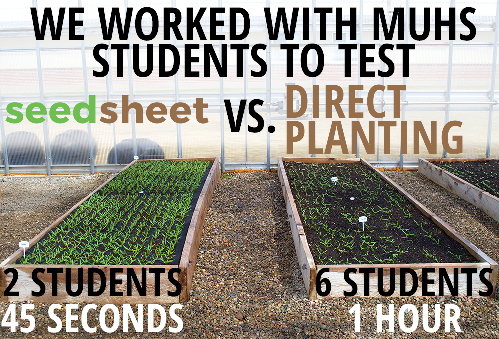 Comparison test trials at the Middlebury Union High School greenhouse.