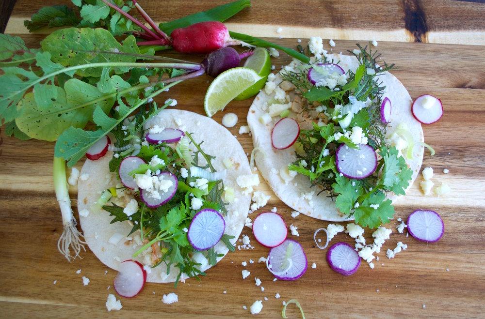 Grow Your Own Rainbow Tacos Recipe