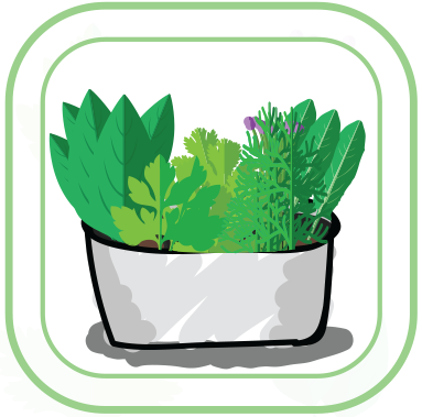 Herbs_Icon.png