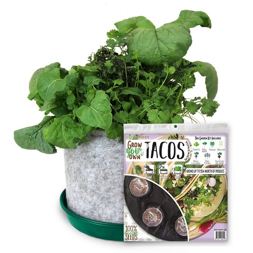Grow Your Own Taco Sheet