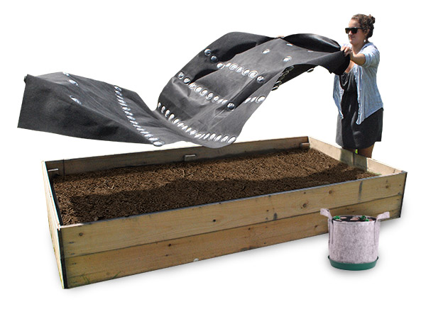 To plant - Simply place the Seedsheet on top of a container full to the brim with soil.