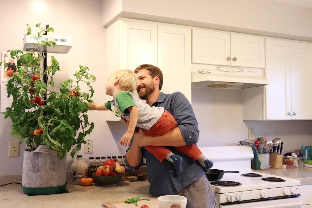 5 easy tips to design a small indoor garden
