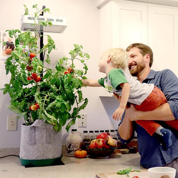 How to Grow Food Inside