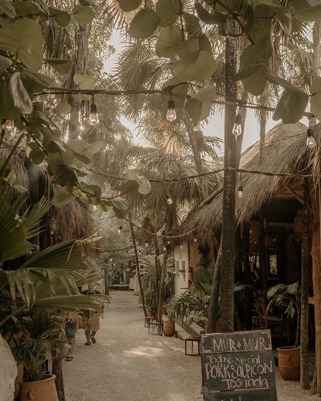 I'm convinced Tulum is the unpretentious equivalent of the Hamptons for spiritual hippies.  #MilesFromTulum #milesfrommexico