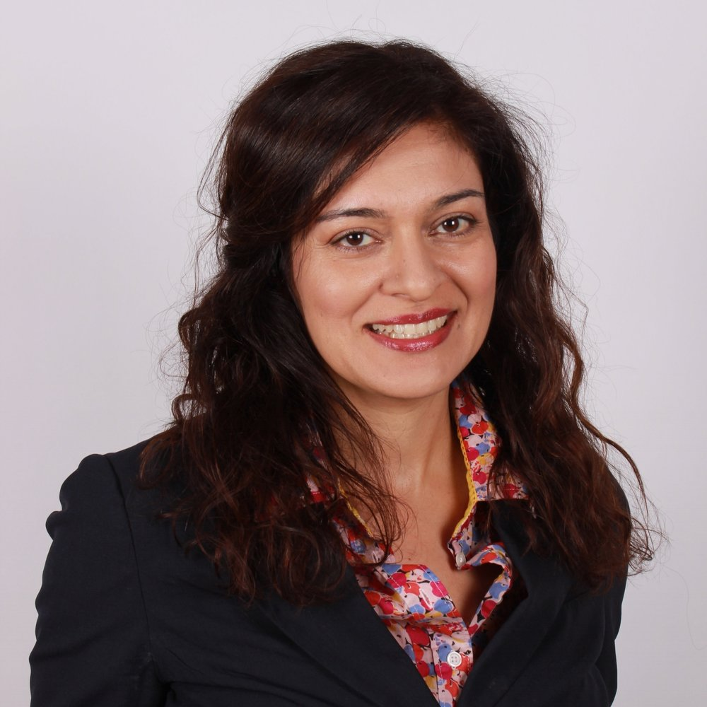 Negeen Darani - DIRECTOR OF EMERGING STRATEGIES