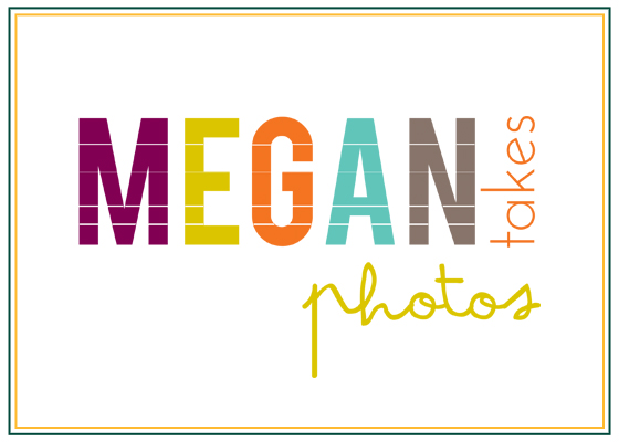 sponsor logos megan takes photos.jpg