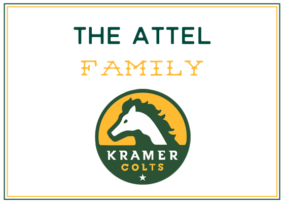 sponsor logos attel.jpg