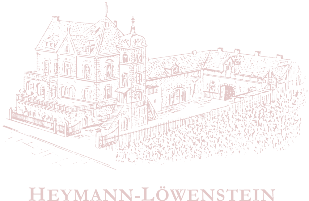 heymann_lowenstein_logo_2.png