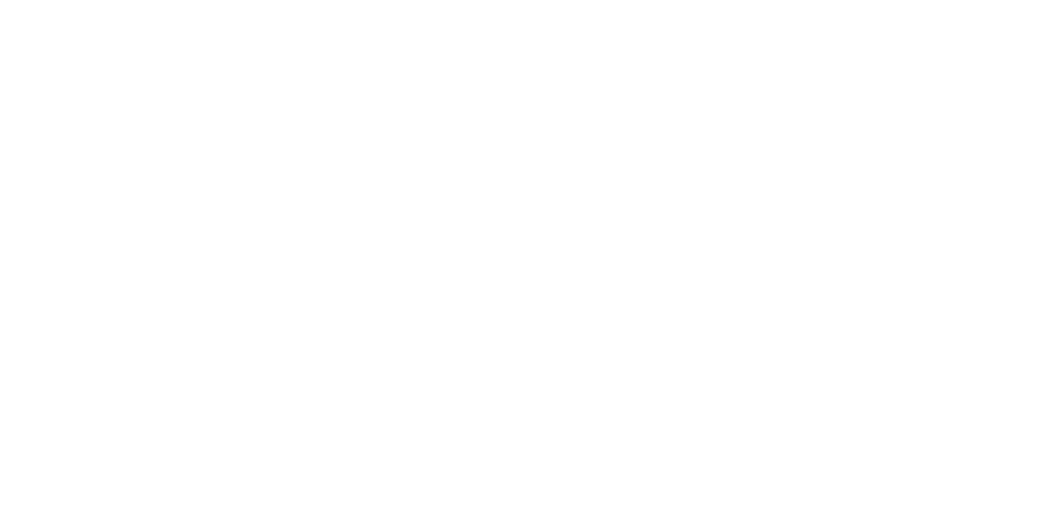 93 North Skis
