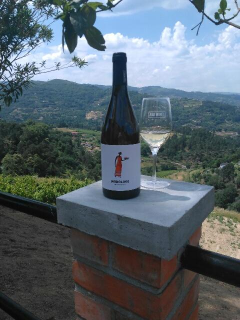 Vinho Malvasia.jpg