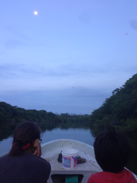 Coconut and J have their eyes peeled for crocodiles at the protected area in Santa Maria Colotepec, Oaxaca, Mexico