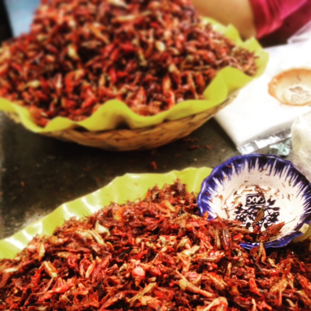 Grasshoppers are a big thing in Oaxaca. You can buy a bag of them to munch on for cheap. We learned that these are not farmed, but caught by hand in the wild!