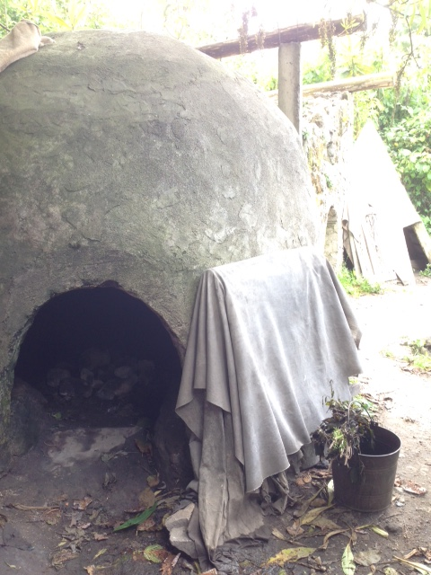 The teepee that we crawled inside for our Temazcal - traditional Mexican herbal cleansing steam bath.