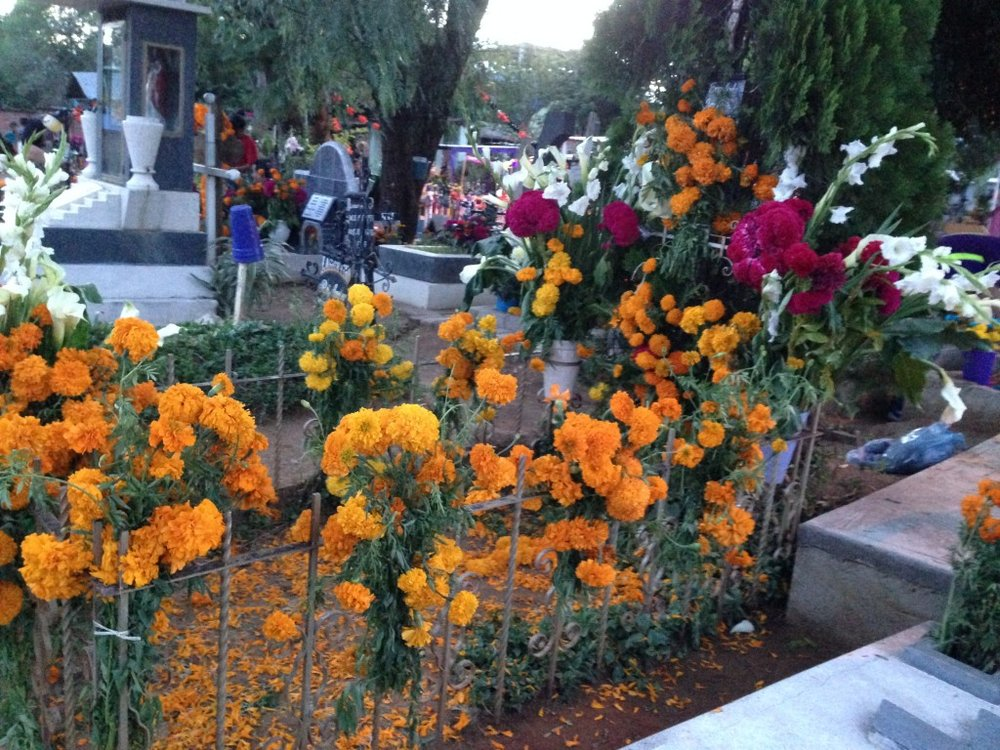 Mexican marigolds are the primary flower used to decorate graves.