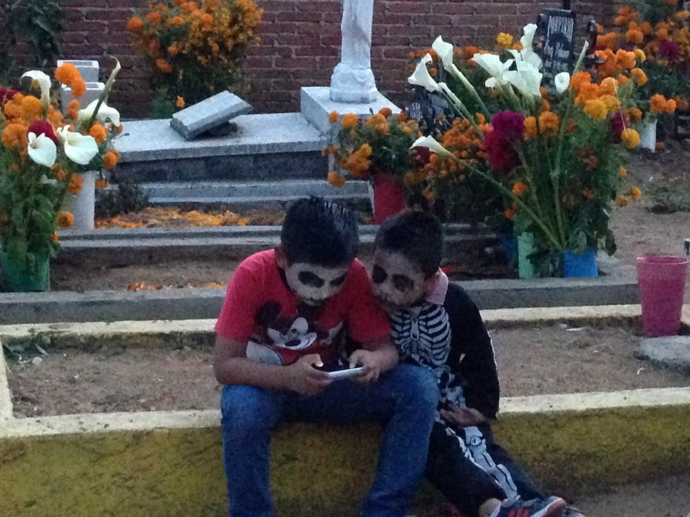 Even the undead like to play Plants vs. Zombies.