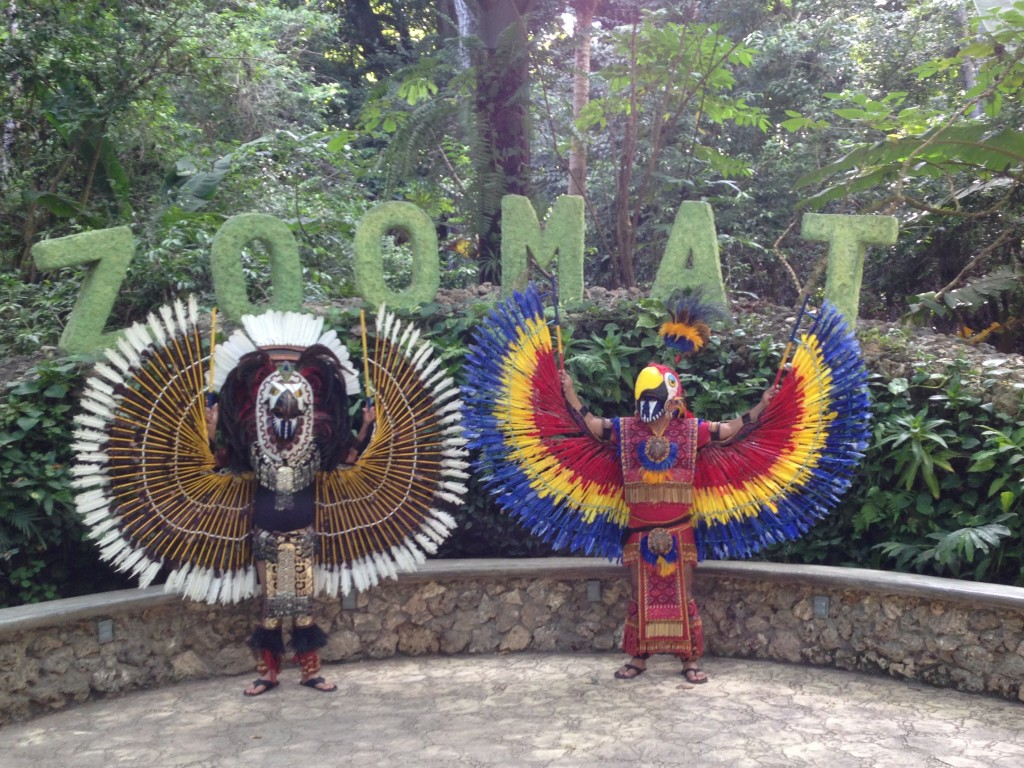 We didn't get to see any parrots at Sima de las Cotorras, but we did see these gigantic birds at the zoo in Tuxtla Guiterrez