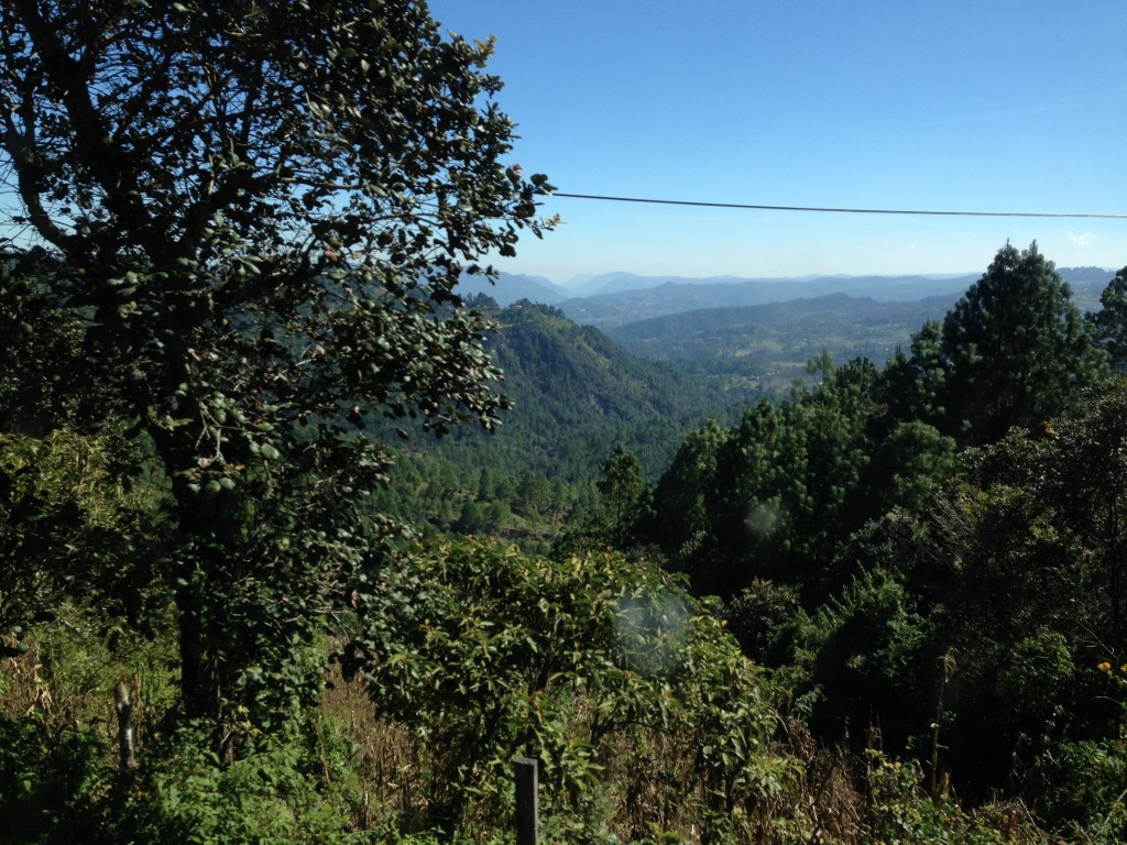 One of the beautiful vistas we had on the ride from San Cristobal to Palenque.