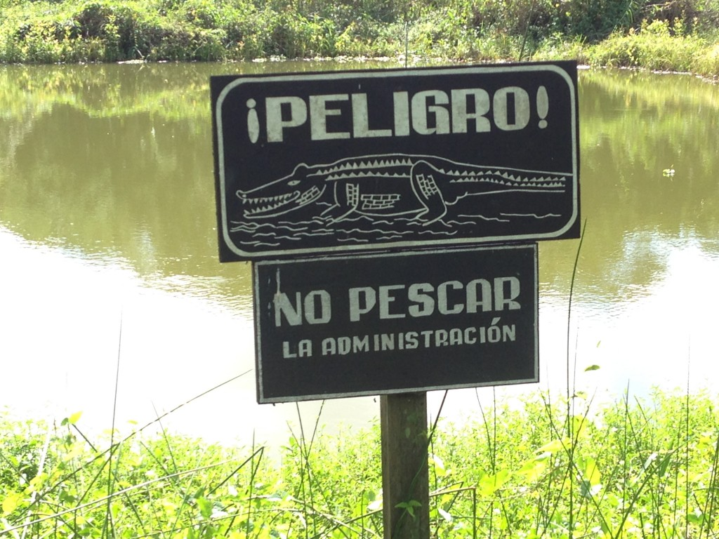 You don't need to speak Spanish to understand that you should not swim in these waters.