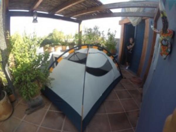 Coconut's rooftop campsite in Sean and Mittie's garden