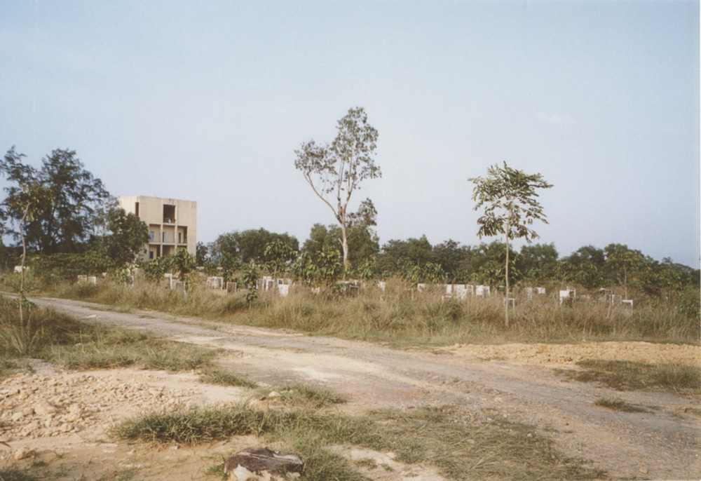 South VN Cemetery - Pre-Restoration 02.jpeg