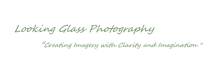Photography -