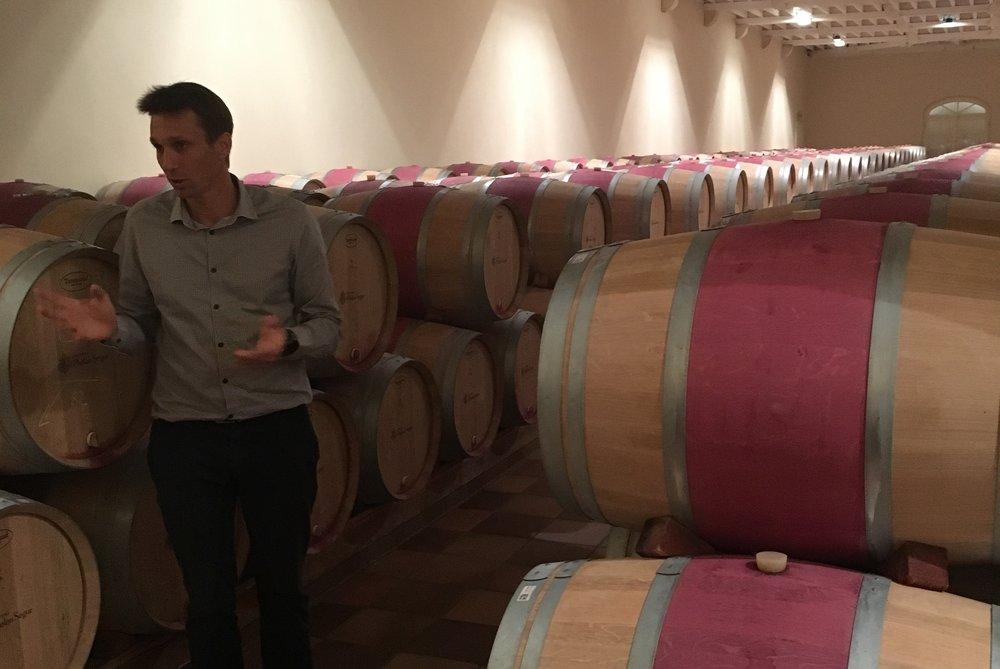 Cellar Master Fabrice Bacquey at Phelan Segur